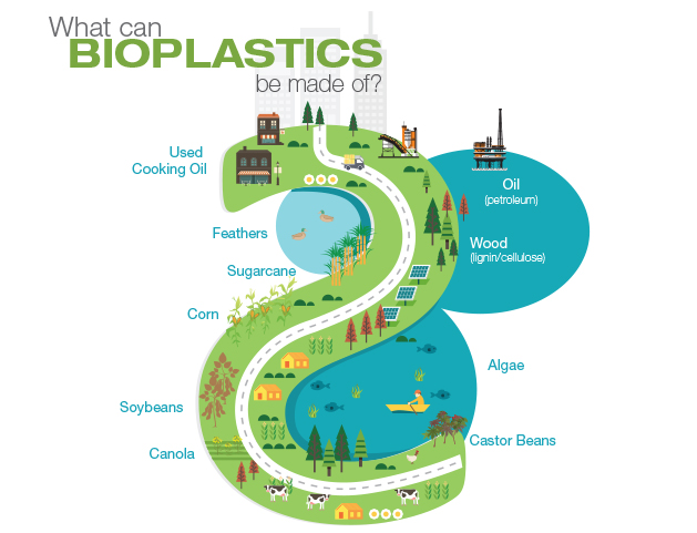 What Can Bioplastics Be Made Of?